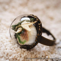Nature Inspired Jewelry Real Ocean Series Rings Gift (HM0172)