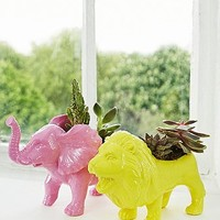 Urban Grow Lion Planter in Yellow - Urban Outfitters