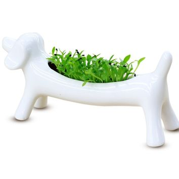 White Ceramic Dog Flower Plant Pot + Self Growing Kit