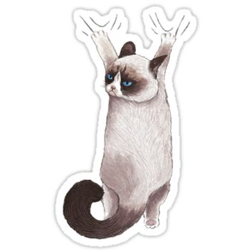 'Grumpy Cat' Sticker by MATDiamonds