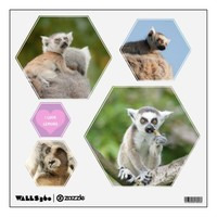 baby lemur  wall decal set hexagon from Zazzle.com