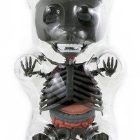 Limited Edition Anatomy Gummy Bear (Grey)