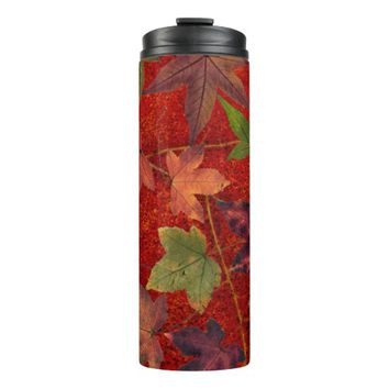 Colorful Autumn Leaves Brown Red Green Tumbler