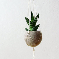 Beige Felt planter / Hanging planter / Macramè hanging pod / light camel / minimalist home decor / air plant vase / CHOOSE YOUR COLOR
