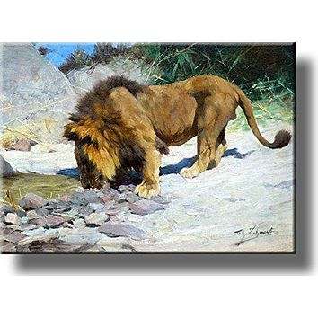 Lion Drinking Water Painting Picture on Acrylic , Wall Art Décor, Ready to Hang!