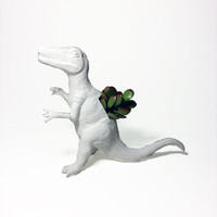 BLACK FRIDAY DOORBUSTER - Up-cycled White Deinonychus Dinosaur Planter - With Succulent Plant