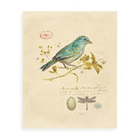 Gilded Blue Songbird Wall Art - Bed Bath & Beyond