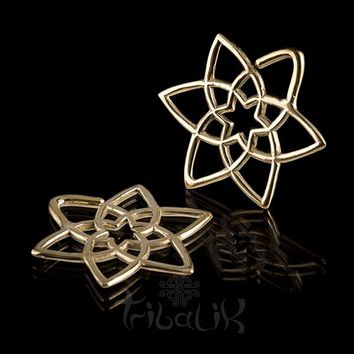 Geometric Star Brass Ear Weights Tribalik Brighton