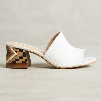 Vicenza Embossed Leather Mule Sandals