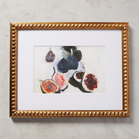 Figs Wall Art