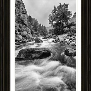 Colorado Black And White Canyon Portrait Framed Print