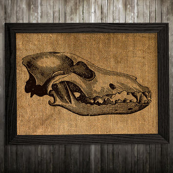 Dino skull decor Anatomy poster Animal print Skull print BLP477
