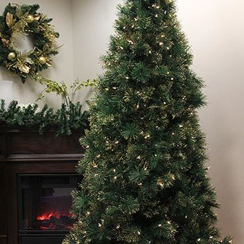 6.5' Pre-Lit Slim Tattinger Long Needle Pine Artificial Christmas Tree - Clear