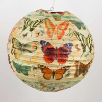 History Of The Butterfly Paper Lantern