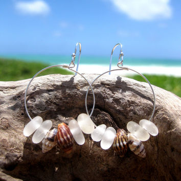 Hawaiian Clear Beach Glass Surrouding 2 Pairs Matching Small Hawaiian Tidal Shells on 925 Sterling Silver Circular Wire Small Hoop Earrings