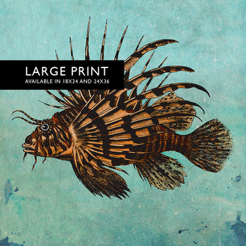 "Vintage Lion Fish Print 18x24"" 24x36"" Victorian Vintage Beach Art Print Vintage Nautical Decor Ocean Wall Art Giclee Print on Canvas & Satin"