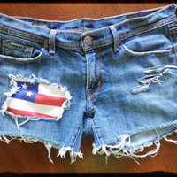 Size 30 Citizens Of Humanity Custom Distressed Shorts 4th of July