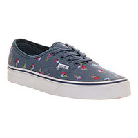 Vans AUTHENTIC ICE CREAM DAZE EXCLUSIVE Shoes - Vans Trainers - Office Shoes