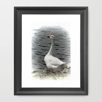 White Goose Framed Art Print by Photography By Pamela