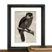 Owl Art Print - Mothers Day Fathers.. on Luulla