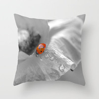 black white poppy with a red ladybug Throw Pillow by Tanja Riedel