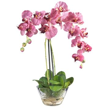 SheilaShrubs.com: Purple Phalaenopsis w/Glass Vase Silk Flower Arrangement 4643-PR by Nearly Natural : Artificial Flowers & Plants