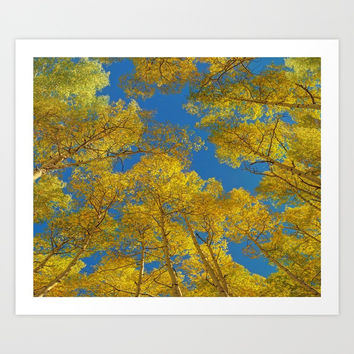 Aspen Trees Against Sky Art Print by Lena Owens/OLenaArt