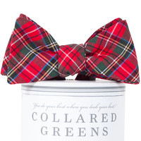 Prince of Wales Bow Tie