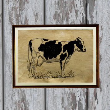 Dairy cow print Farm Animal decor Vintage paper Antique engraving 8.3 x 11.7 inches