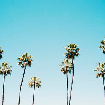 California Wall Art, Palm Trees, Landscape, Blue, Aqua, Summer, Photography Decor, Californication, 8x10 Print