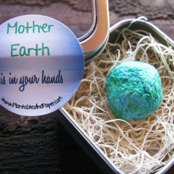SET OF 12- Mother Earth is in your hands- seed bomb in metal tin favor- Earth Day, Ecofriendly, Green