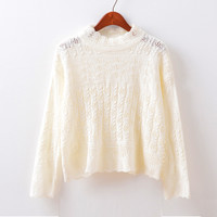Korean Knit Hollow Out Long Sleeve Sweater [9017749764]