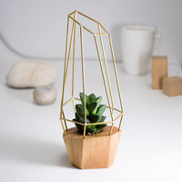 Modern Faceted Planter - for Air Plant, Succulent and Cacti - Wood Brass Polygon Gem