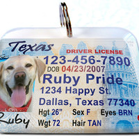 Texas driver license Personalized Custom ID Tags for dogs and cats Double Sided pet tags