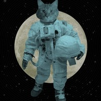 Astronaut Space Cat 8x10 Print