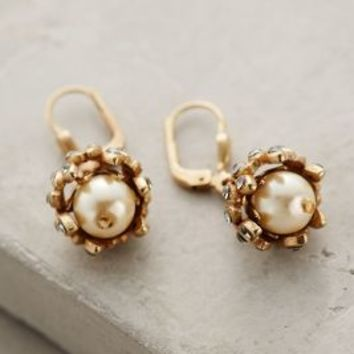 Gilded Acorn Earrings by La Vie Parisienne Pearl All Earrings