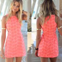 Sleeveless Lace Dress [6259275076]