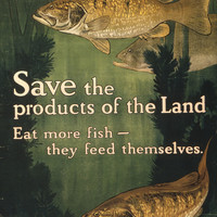 WWI Poster Save The Products Of The Land Eat More Fish They Feed Themselves Unit
