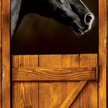 "Door STICKER horse black stall zoo mural decole film self-adhesive poster 30x79""(77x200 cm) /"