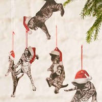Falling Cats Ornament Set