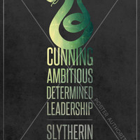 "Harry Potter: Hogwarts Houses - ""Slytherin"" Digital Art 11x17 Poster Print"
