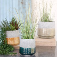 Round Ceramic Planters (Set of 3)