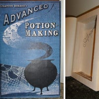 Advanced Potion Making Textbook // Potions Book Safe by wiirenet