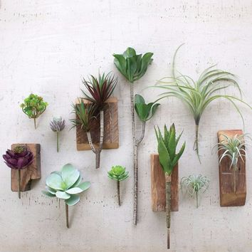 Artificial Air Plants | Pack of 6