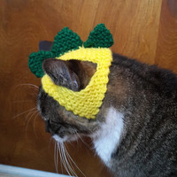 Dinosaur Cat Hat
