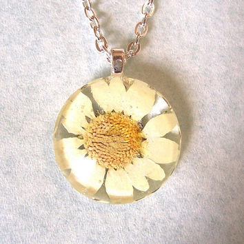 Real White Daisy Pressed Flower  Round Glass Necklace