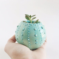 Small Planter Vessel - Mint Ceramics - Succulent Planter
