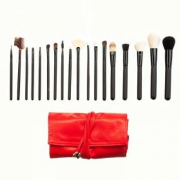 SET 684 - 18 PIECE PROFESSIONAL BRUSH SET
