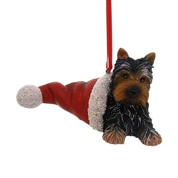 Holiday Ornaments PUPPY IN SANTA HAT Polyresin Best Friend Canine 131401 Yorkie