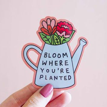 Bloom Where You're Planted Vinyl Sticker in Blue and Pink Floral